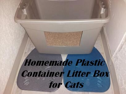Container Litter Box Title Graphic