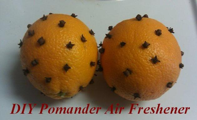 Pomander graphic blog